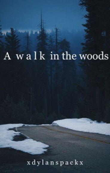 a walk in the woods (Dylan obrien fan fic)