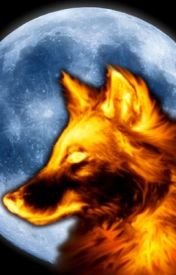 Fire Wolf by FireWolfy1234