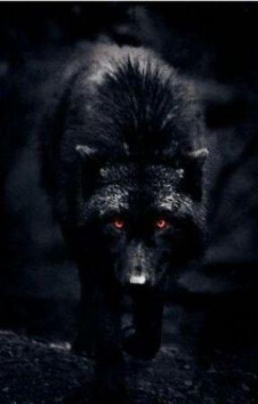 Lobo rechazado by MartaGonzales_8