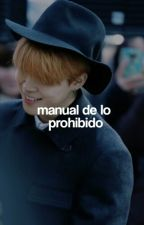 manual de lo prohibido » jikook by jixkook