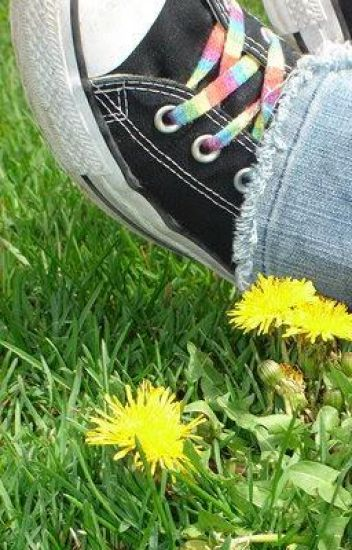 Her Untied Shoelaces