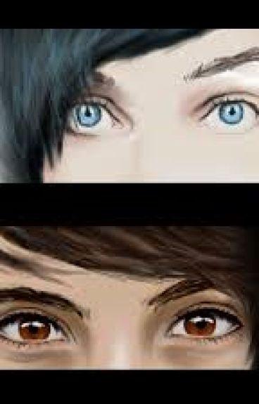 Blue or brown (Dan or Phil X Reader)
