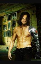 Bucky Barnes/Winter Soldier x Reader by dizzyizzyw