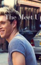 Niall Horan - The meet up by irishgirlwriterlove
