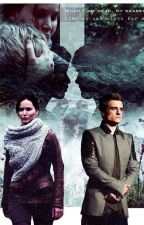Depois da esperança - Peeta Mellark by NicolyFaustino