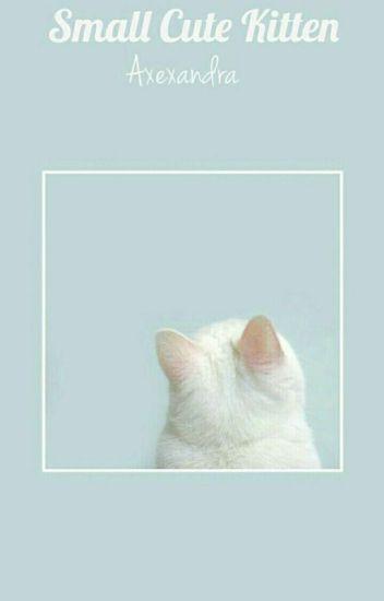 Small cute kitten (OS,LS)