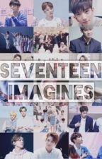 Seventeen Imagines by _notalcohol