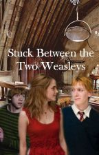 Stuck Between the Two Weasleys (Fremione) *ON HOLD* by FanaticOfThings