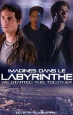 Imagines dans Le Labyrinthe by I_Just_Love_Bowls