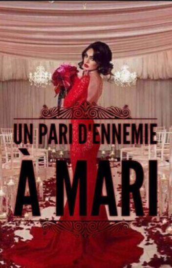 UN PARI : D'ENNEMIE À MARI ( EN PAUSE )