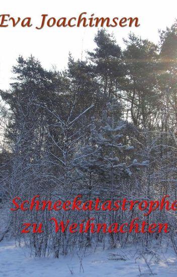 Schneekatastrophe zu Weihnachten