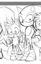 The Sonic crew x reader (assorted x readers of all types.) by Flickerflicker