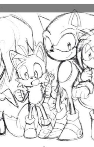 The Sonic crew x reader (assorted x readers of all types.)