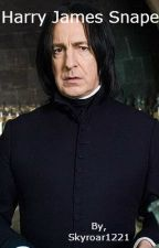 Harry James Snape. by Skyroar1221