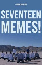 SEVENTEEN MEMES!  by clairetheresem