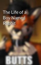 The Life of a Boy Named Rabbit by 4evrGay