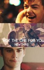 Not the one for you {Newtmas} by MockingjayRunner