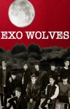 Exo Wolves (Feat. BTS & F(x) ) by XIUMIN_LOVE_LOVE