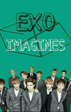 EXO x Reader Imagines by Deinosaaawr