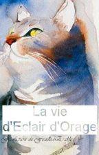 La vie d'Éclair d'Orage by FeuilledErable