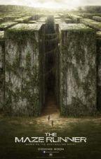 The Maze Runner by chrisdelpilar