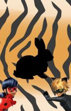 Coloured Stripes [Miraculous Ladybug Fanfic] by The_Lady_In_Noir