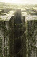Sobre Maze Runner by StuckInTheFuture