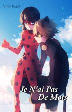 Je N'ai Pas De Mots | Drabble by anoniblast25