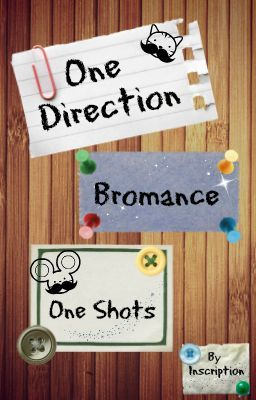 One Direction Bromance