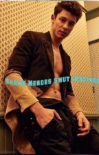 Shawn Mendes smut Imagines by SophiaJacobs1