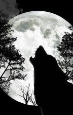 Alpha  by KG_DreamS6