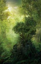 La forêt d'Isagwa~ by UneJeuneInconnue