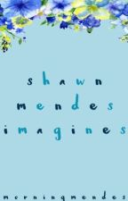 shawn mendes imagines by morningmendes