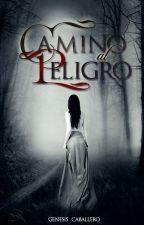 Camino al Peligro by SkyfallHurts26