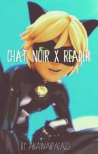 A New Miraculous In Town (Chat Noir X Reader) by aKawaiiPatato