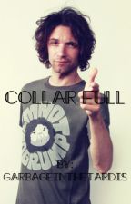 Collar Full (A Danny Sexbang x Reader Fanfiction) by chocolate-stingrays