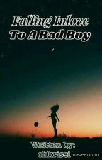 Falling Inlove To A Bad Boy (COMPLETED/EDITING) by ohkrisei