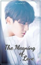 The Meaning of Love (SEVENTEEN FF) by sherinaolv