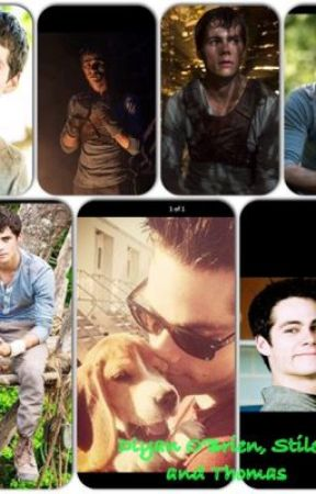 Dylan O'Brien, Stiles, & Thomas Imagines and Preferences by Crazy_Bout_Country