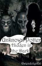 Unknown Potter - Hidden in the Dark by Gwendolyn00