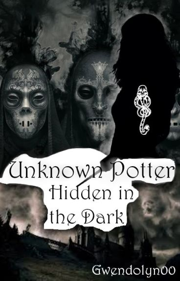 Unknown Potter - Hidden in the Dark