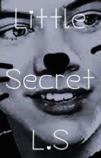 Little Secret L.S /EN PAUSE/ by oceanebls76
