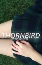 Thornbird » H.S. by whiskeystyles