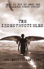 The Indestructibles by arcticsandpiper