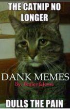 DANK MEMES by baileysmith9889