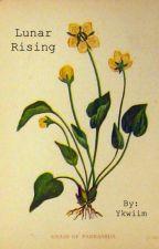 Lunar Rising by Ykwiim