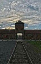 Освенцим by DedkovSV22