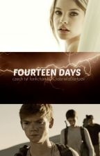 Fourteen Days (TST fanfiction CZ) by GabrielaBartoov