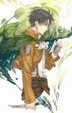 Please Remember Me (Levi x OC) by Faelyg