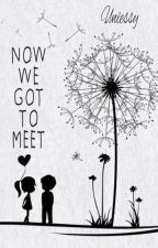 NOW WE GOT TO MEET by uniessy